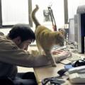 Stavo programmando, compiti per casa. Ma Ron voleva le coccole! - I was programming, homework. But Ron wanted cuddles!