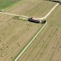 Campagna Veneta: una casa colonica circondata dai campi. E' stato appena tagliato il fieno - Venetian countryside, a farmhouse surrounded by fields. Hay has just been mown